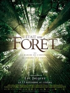 il_etait_une_foret_1378805606659